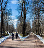 Two are walking in the park. Two are walking in the park  in Peterhof in the spring Royalty Free Stock Photo