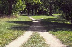Two walking paths among the grass intersect in the park on a sunny summer day. Two footpaths in the grass intersect in the park on a sunny summer day royalty free stock photos