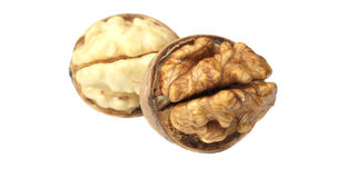 Two Walnut nuts Stock Image