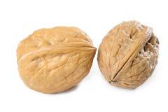 Two walnut Stock Photo