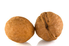 Two walnuts Royalty Free Stock Images