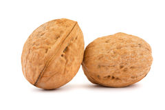 Free Two Walnuts Stock Photography - 19625552