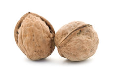 Two walnuts Stock Images