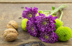 Two walnuts, green and purple chrysanthemums on wood ba Stock Photo