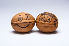 Two Happy Walnuts. Two walnuts with happy face drowing on the nut shell. Fun with friends Royalty Free Stock Photo