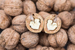 Two walnuts hearts. Rustic brown romantic walnuts hearts Royalty Free Stock Photo