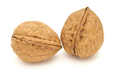 Two walnuts isolated Royalty Free Stock Image
