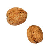 Two walnuts Royalty Free Stock Image