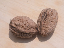 Two walnuts Stock Photography