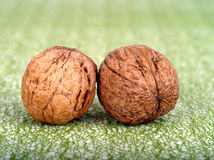 Two walnuts Royalty Free Stock Photos