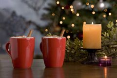 Two warm holiday drinks by the tree. Two warm holiday drinks in mugs by the tree Royalty Free Stock Photos