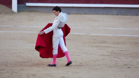 Two warriors. Spain. Madrid. May 05, 2013. Bullring Las Ventas. Bullfighter talks with the bull in the language of the bull. Editorial use only stock footage