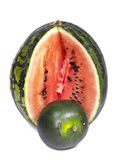 Two water-melons of various grades - big and dwarfish,small depth of sharpness, focus on a crust of a big water-melon Stock Photo