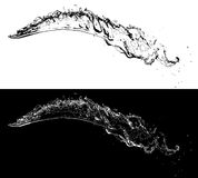 Two water splashes isolated Royalty Free Stock Photography