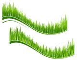 Two waves of green grass Stock Image