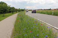 Two way traffic, country road, kerb with flowers Royalty Free Stock Image