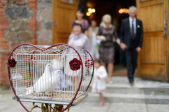 Two wedding doves as love symbol. Two doves as love symbol at wedding stock photography