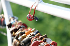Two wedding lock compared to other locks hanging Stock Images
