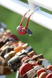 Two wedding lock compared to other locks hanging Royalty Free Stock Images