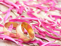 Two wedding rings Royalty Free Stock Photography