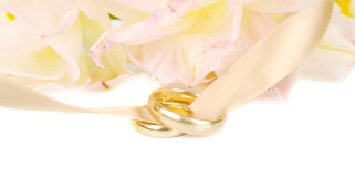 Two wedding rings. Royalty Free Stock Image