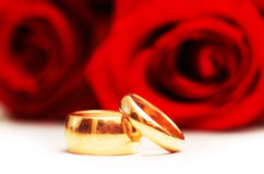 Two wedding rings. And red  roses isolated on white Stock Image
