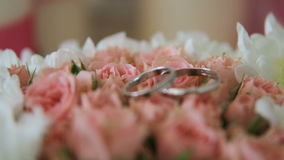 Two wedding rings. stock video