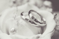 Two wedding rings with flowers. Black and white picture of wedding rings with flowers Royalty Free Stock Image