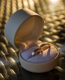 Two wedding rings in a gift box Royalty Free Stock Photos