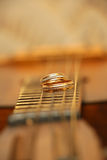 Two wedding rings are on guitar stripes Stock Photography