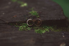 Two wedding rings in infinity sign. Love concept. Very small dep Royalty Free Stock Photos