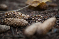 Two wedding rings in infinity sign on a wood. Love concept. Two wedding rings in infinity sign on a wood stock photo