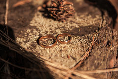 Two wedding rings in infinity sign on a wood. Love concept. Two wedding rings in infinity sign on a wood royalty free stock image