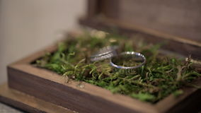 Two wedding rings lie in a wooden casket on green vegetation. Jewelry of white gold with precious stones are in the original packaging on decorative spruce stock footage