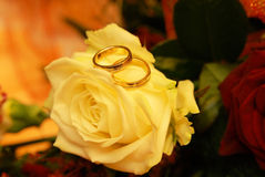 Two wedding rings Royalty Free Stock Images