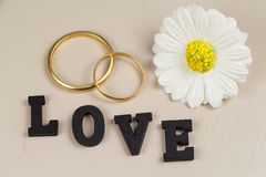 Two wedding rings in gold, flower and love Stock Images