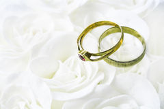 Two wedding rings over  roses Stock Image
