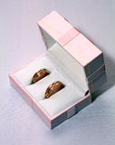 Two wedding rings in pink box Stock Images