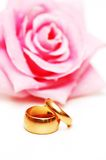 Two wedding rings and pink ros Stock Image
