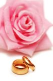 Two wedding rings and pink ros. E at the background Stock Photos