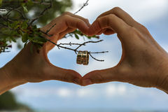 Two wedding rings placed hanging on a brunch inside heart that i Stock Photos