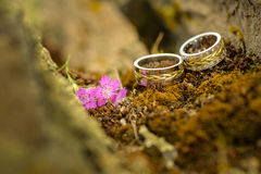 Two wedding rings with purple flower Royalty Free Stock Photography