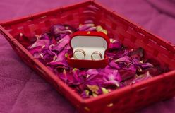 Two wedding rings on rose-petals Royalty Free Stock Images