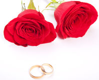 Two wedding rings and red rose Royalty Free Stock Image