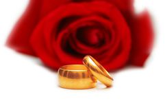 Two wedding rings and red rose Royalty Free Stock Photos
