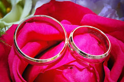 Two wedding rings on red rose  flower. Close up photo of two wedding rings on red rose flower Royalty Free Stock Images