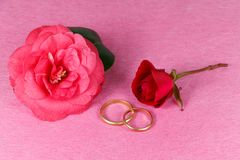 Two wedding rings, red rose and pink camellia flower. For Valentine`s Day royalty free stock photography