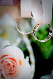 Two wedding rings on a ribbon. A pair of gold wedding rings is hanging on a pink ribbon Royalty Free Stock Photo