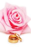 Two wedding rings and rose Stock Images