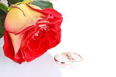 Two wedding rings with a rose as wedding concept Stock Photos